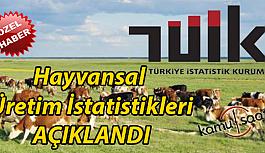 Türkiye Hayvansal Üretim İstatistikleri Açıklandı