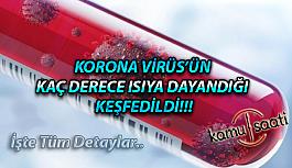 Koronavirüsün Kaç Derece Isıya Kadar Hayatta Kaldığı Bulundu!!!