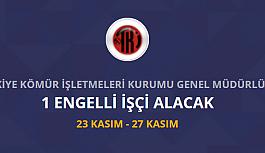 Türkiye kömür işletmeleri kurumu 1 engelli...
