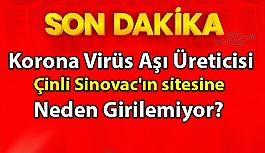 Türkiye'de uygulanan korona aşısının üreticisi SİNOVAC WEBSİTESİNE TÜRKİYE'DEN GİRİLEMİYOR