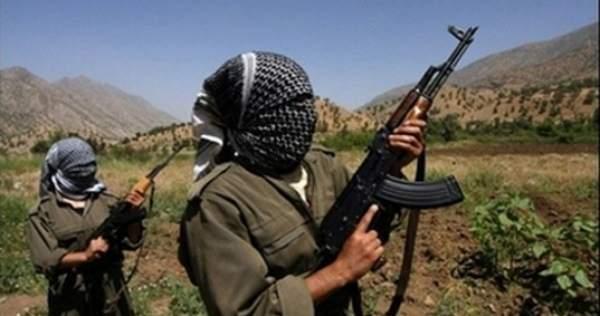 Tunceli Kırsalında PKK'ya Ağır Darbe