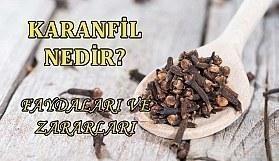 Karanfil nedir? Karanfilin faydaları ve zararları